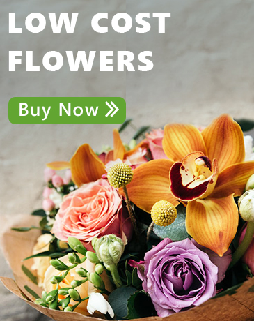 Low Cost Flowers
